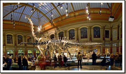 muzeum natury