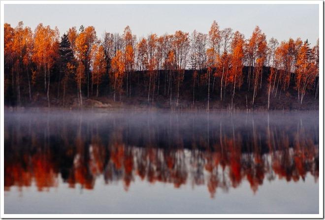 Barwy jesieni 2015_50