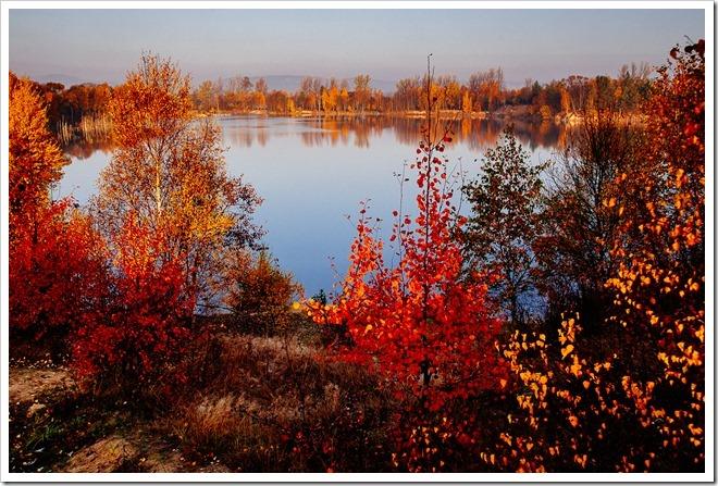 Barwy jesieni 2015_85